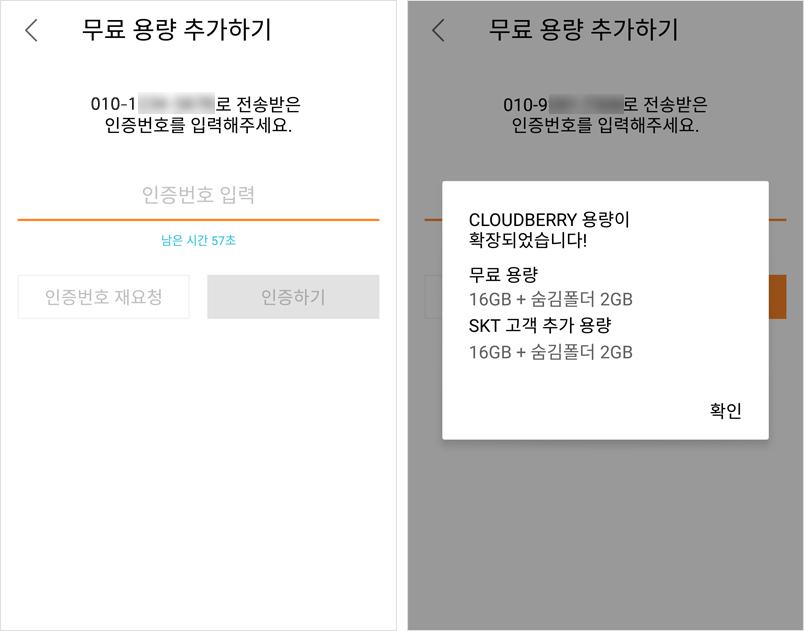 160824-cloudberry-TIP_10